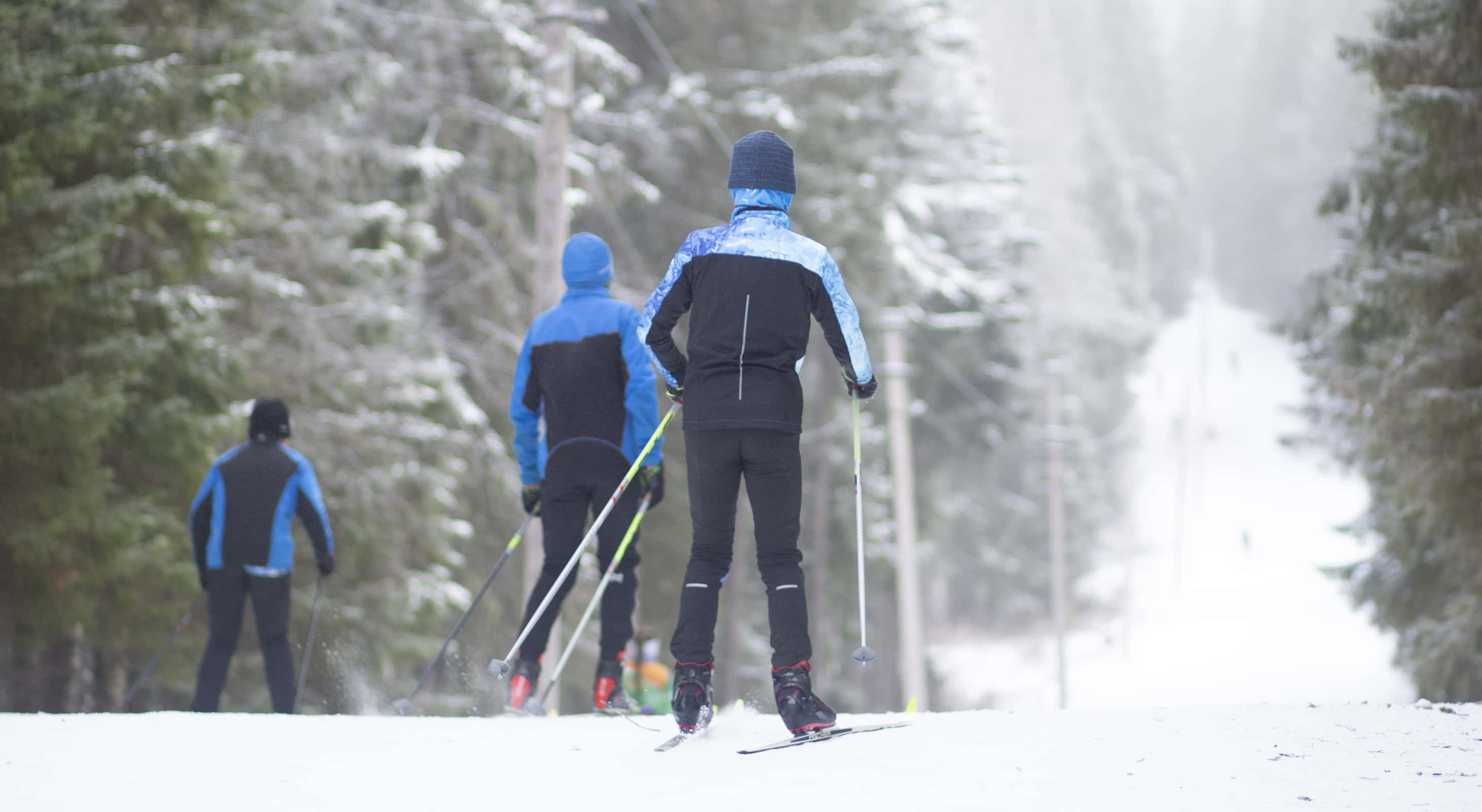 A group of people cross country skiing
