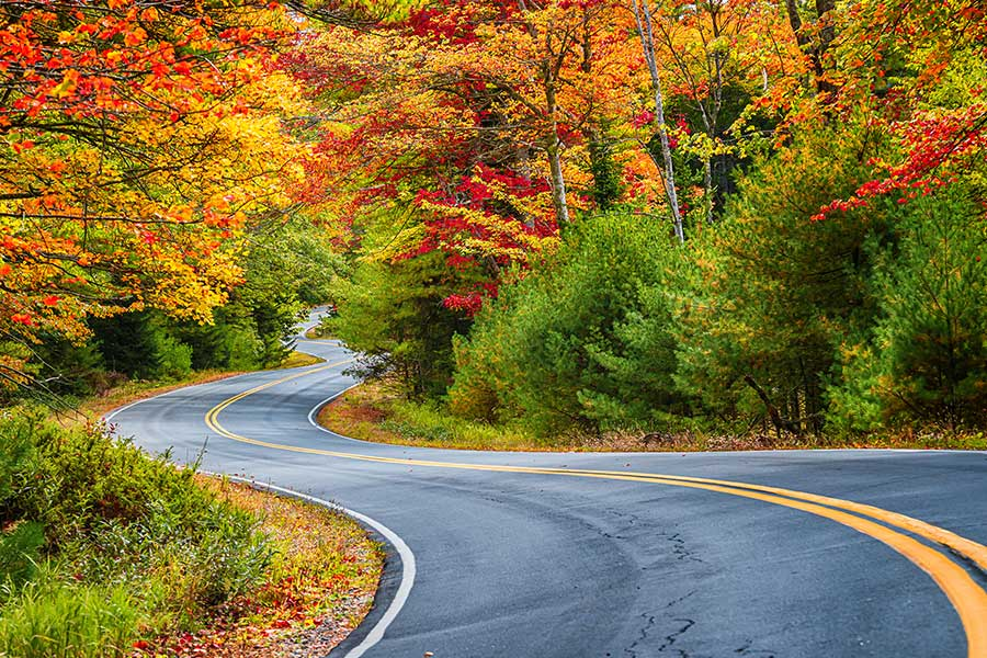 Windy road with fall foliage