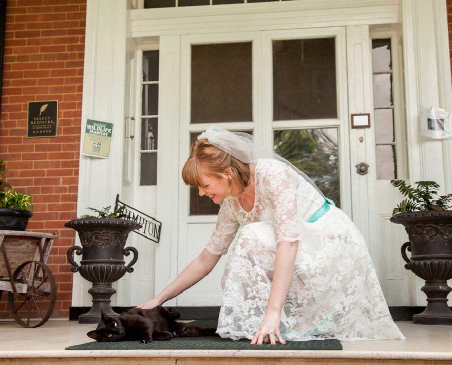 Bride petting a cat