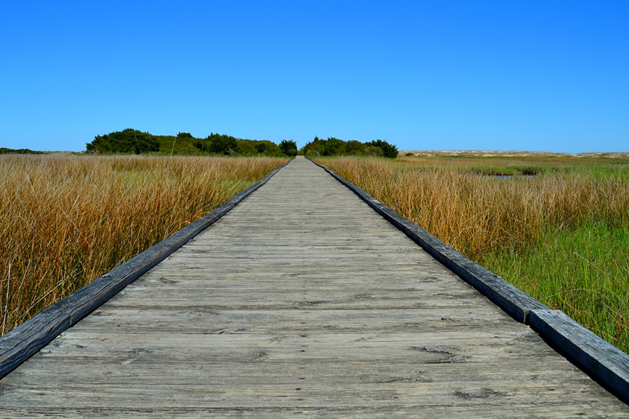 Boardwalk over a marsh on a Maryland hiking trail