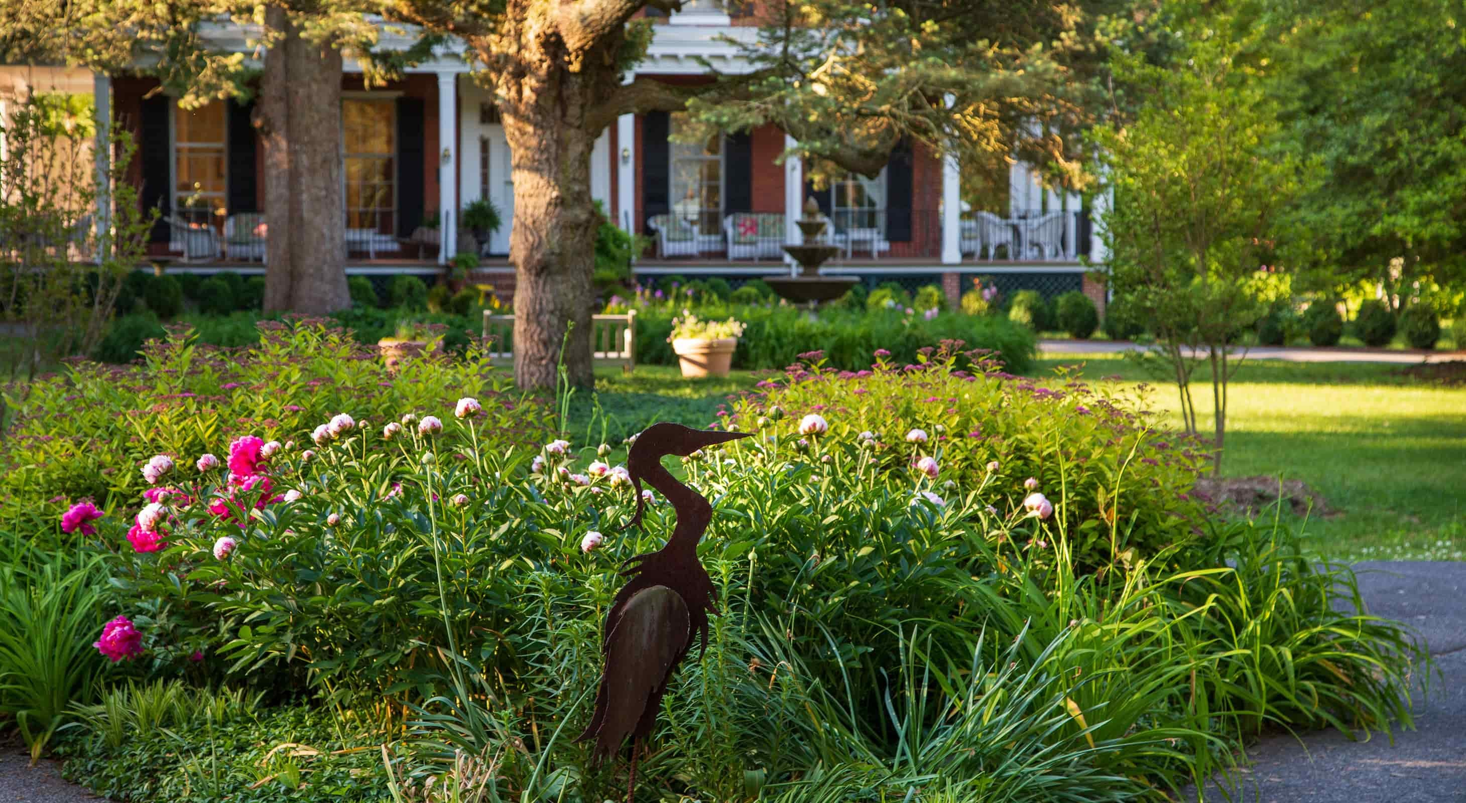 garden flowers and heron at our Eastern Shore B&B