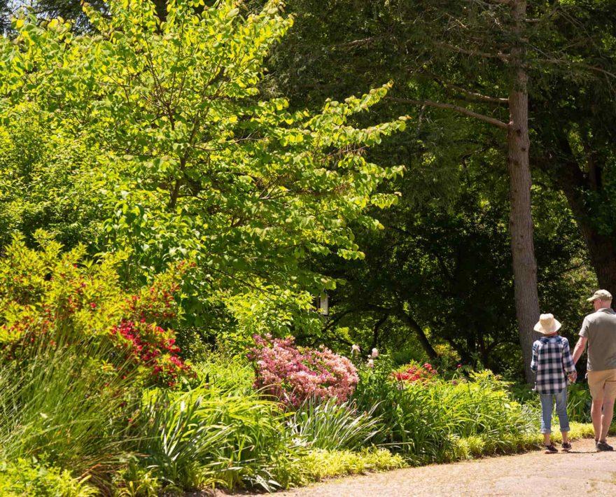 couple walking on a trail through gardens