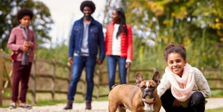 an african american family playing with a dog